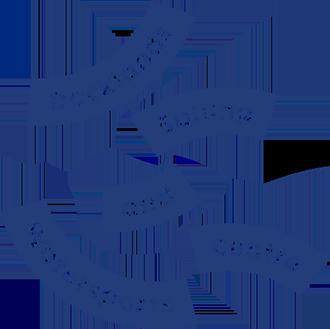 DSWC Logo